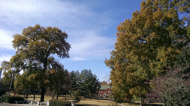 A beautiful fall day in Memphis